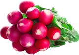 Как вырастить вкусный редис