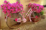 Садовый декор, дачный декор, велосипед, подставка для цветов, фотоидеи