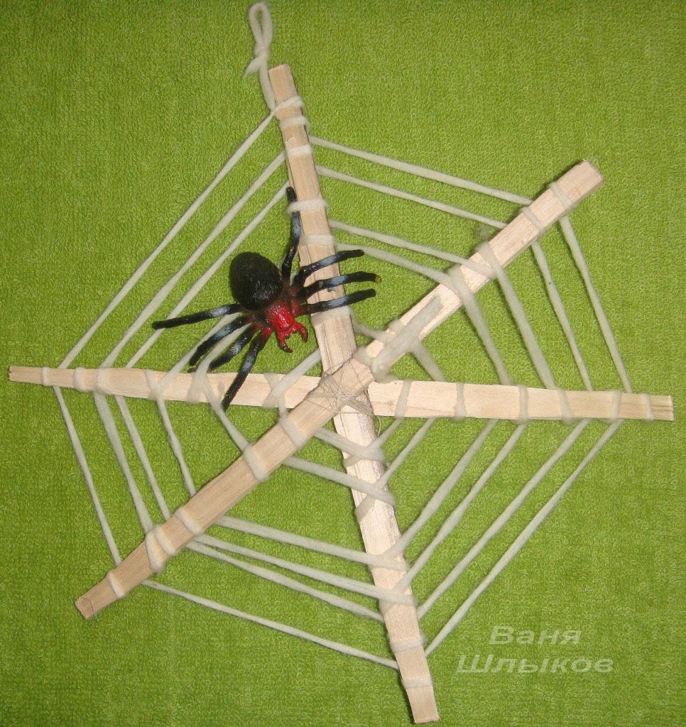 Домик для паука своими руками