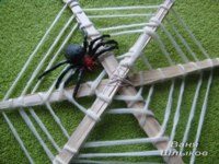 домик для паука